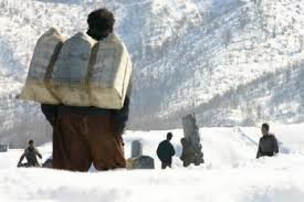 کوله بران در کوهستان پر برف کردستان