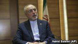 علیاکبر صالحی، رئیس سازمان انرژی اتمی جمهوری اسلامی